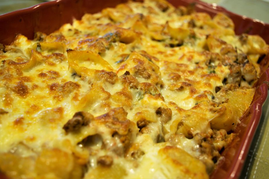 cheesy shell casserols_a_small